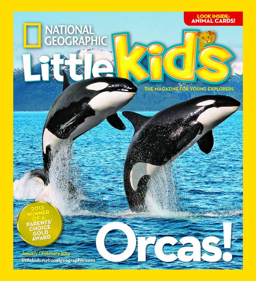 Smiling Orcas