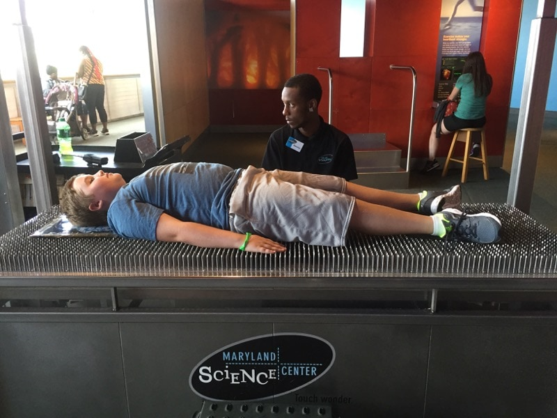 Bed of nails - Maryland Science Center