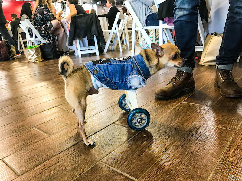 turbo-roo-with-wheels