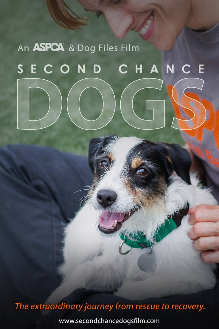 aspca-second-chance-dogs-poster