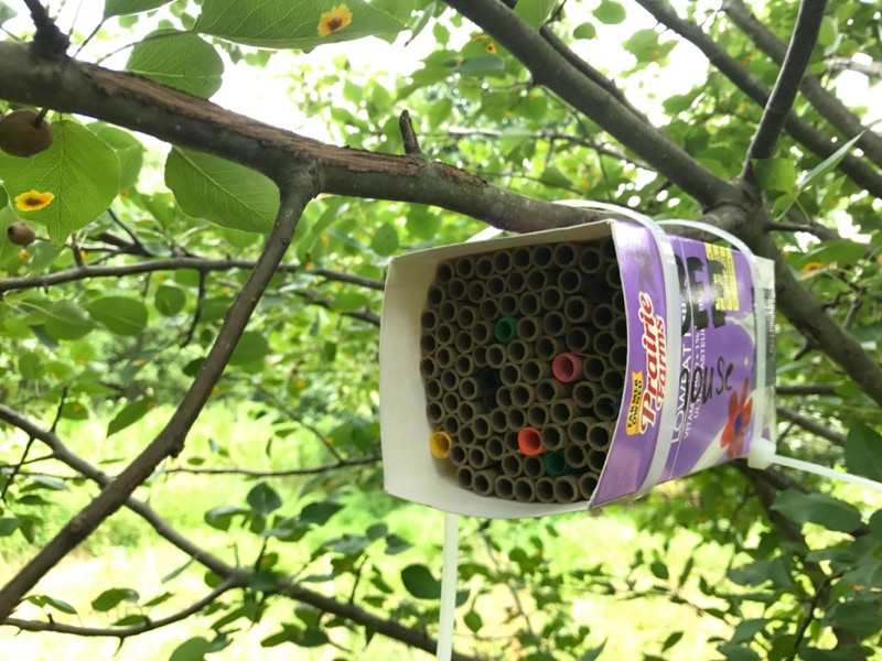 Hanging bee house 1