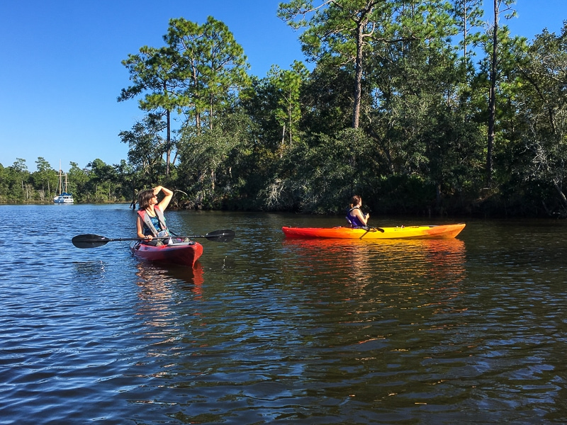 Viewing an osprey nest while kayaking