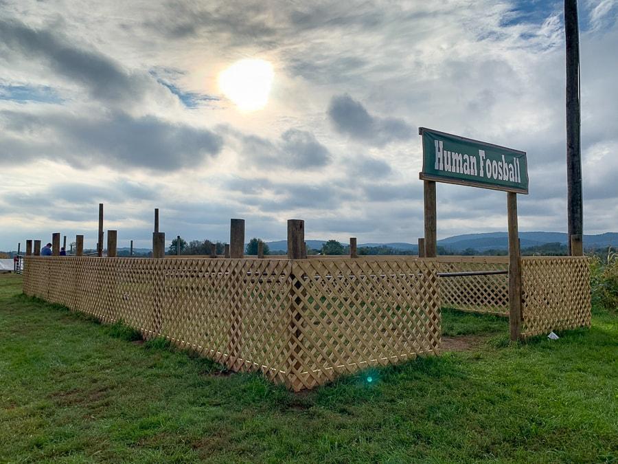 Fields of Adventure Human Foosball