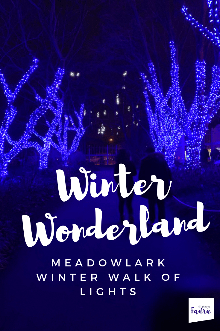 Winter Wonderland - Meadowlark