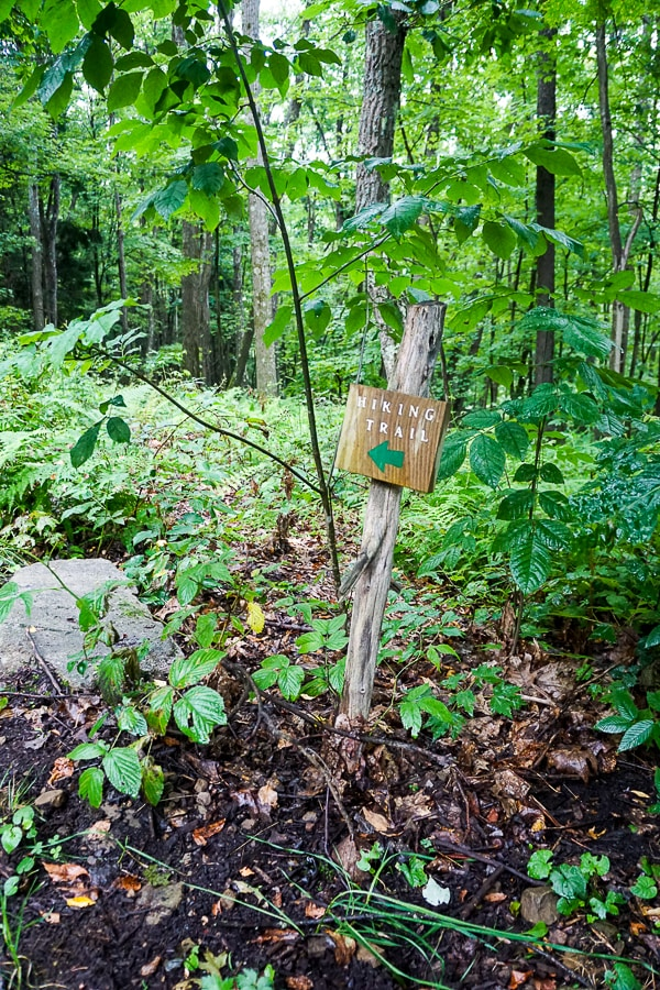 Several hiking trails exist on the property winding their way through the 125 acres of land