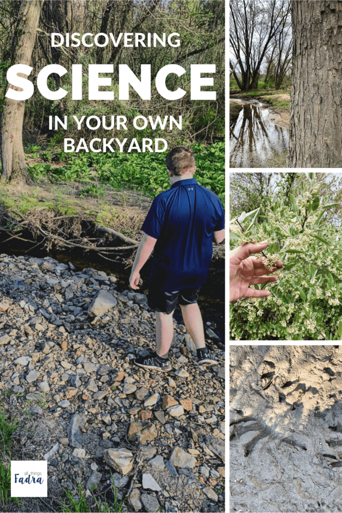 Discovering Science in Your Own Backyard